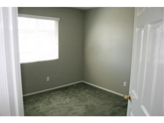 Carpet Sage Green Images
