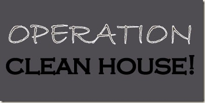 Developing A Whole House Cleaning Plan   Changing My DestinyOperation Clean House Banner