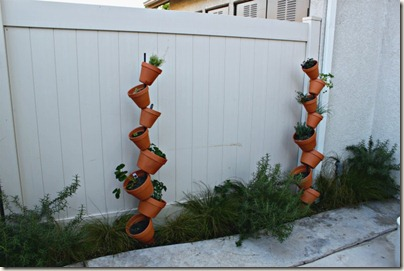 Vertical Gardening_12