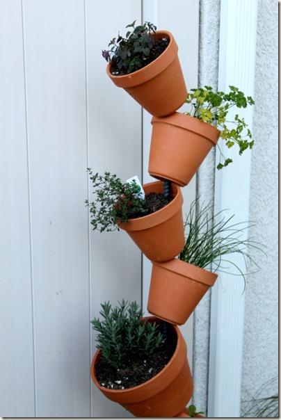 Vertical Gardening_14