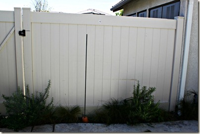 Vertical Gardening_2
