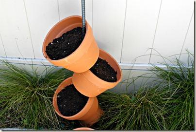 Vertical Gardening_5