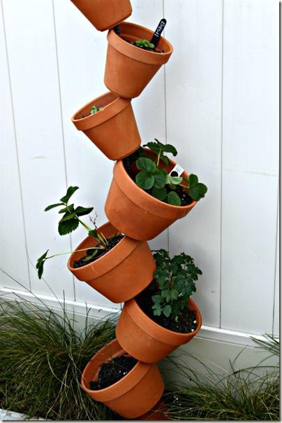 Vertical Gardening_7
