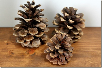 Paint Dipped Pinecone_1