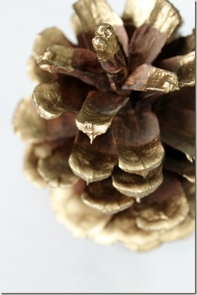 Paint Dipped Pinecone_5