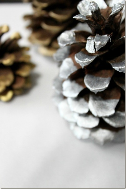 Paint Dipped Pinecone_8