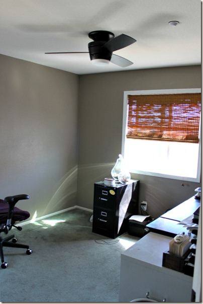 Office Remodel_Fan3